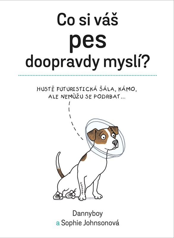 Co si váš pes doopravdy myslí